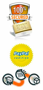 ssl secured paypal